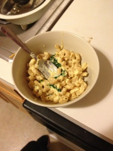 Creamy Greek Yogurt Mac and Cheese... ignore my super dirty counter!