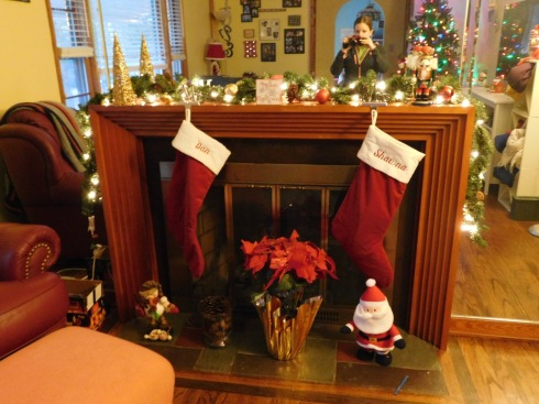 christmas-decor-2016-5